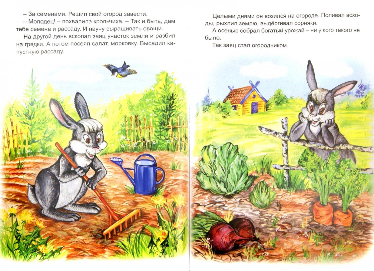 Иллюстрация 1 из 37 для Мудрые сказки | Лабиринт - книги. Источник: Лабиринт