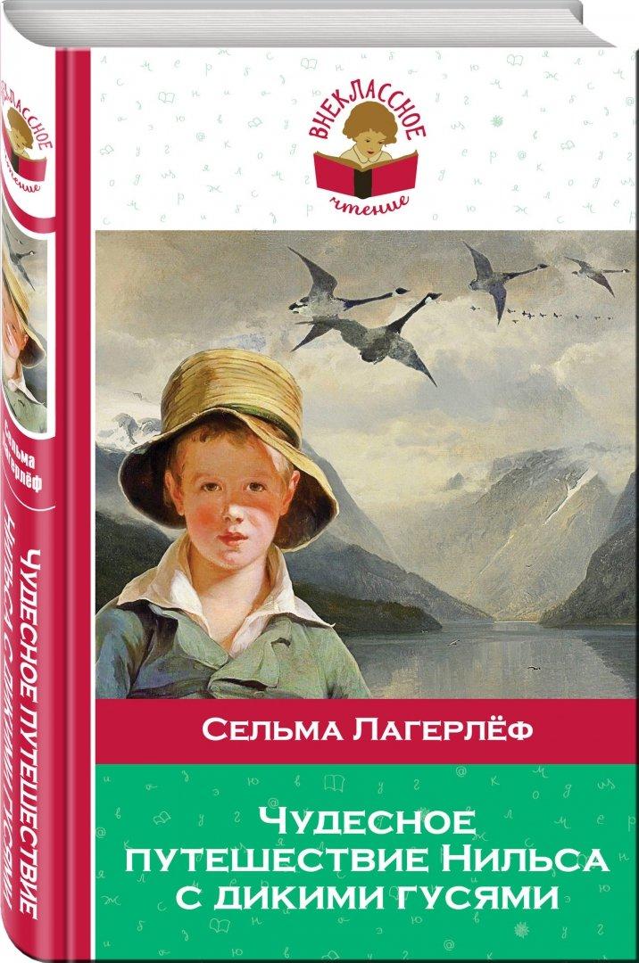 Иллюстрация 1 из 9 для Чудесное путешествие Нильса с дикими гусями - Сельма Лагерлеф | Лабиринт - книги. Источник: Лабиринт