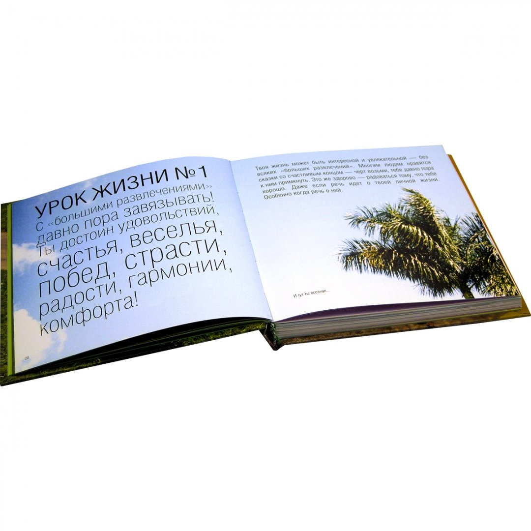 Иллюстрация 1 из 8 для Как радоваться жизни, черт возьми. Учебное пособие по просветлению для циников - Карен Салмансон | Лабиринт - книги. Источник: Лабиринт