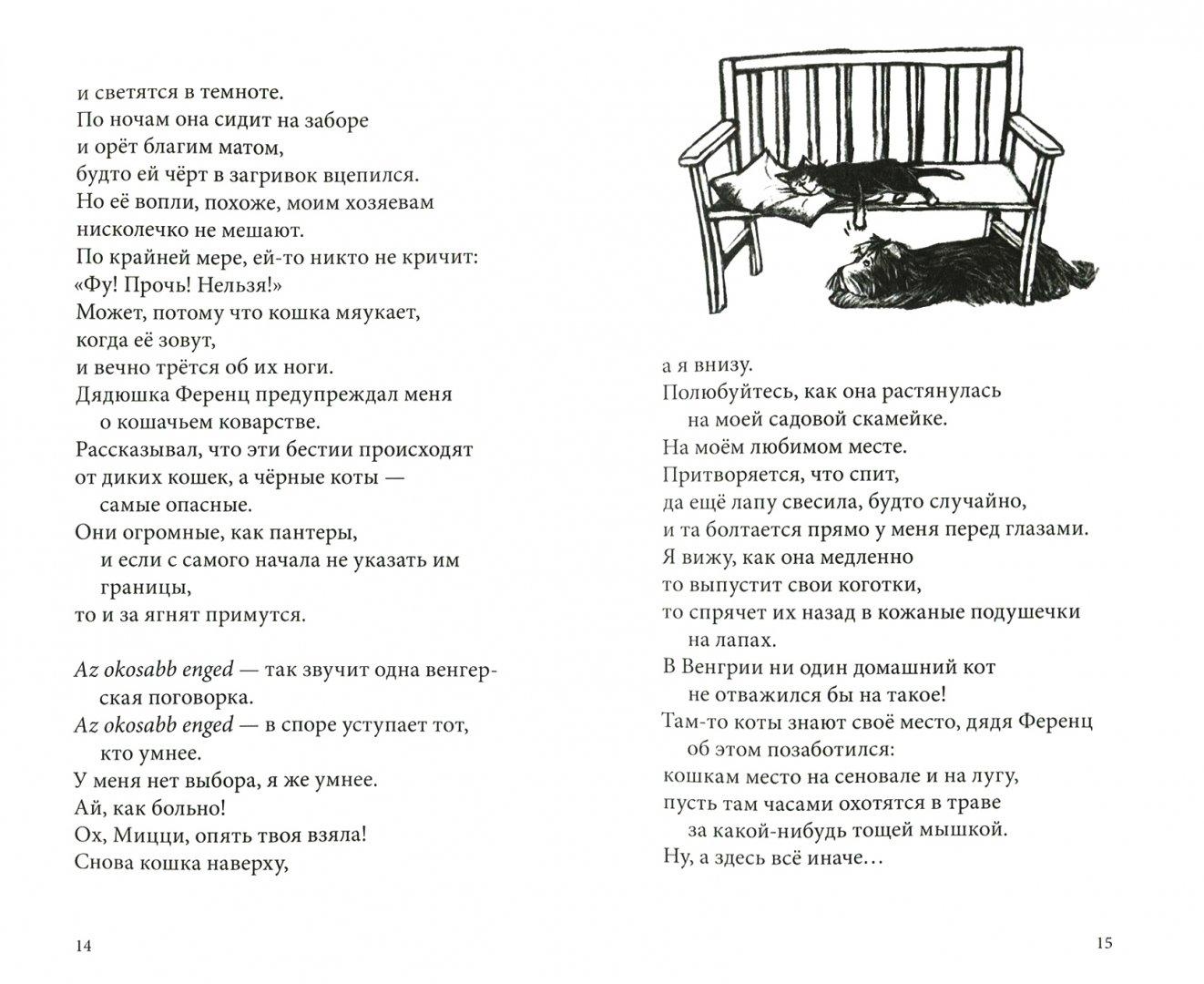 Иллюстрация 1 из 17 для Я всего лишь собака - Ютта Рихтер | Лабиринт - книги. Источник: Лабиринт
