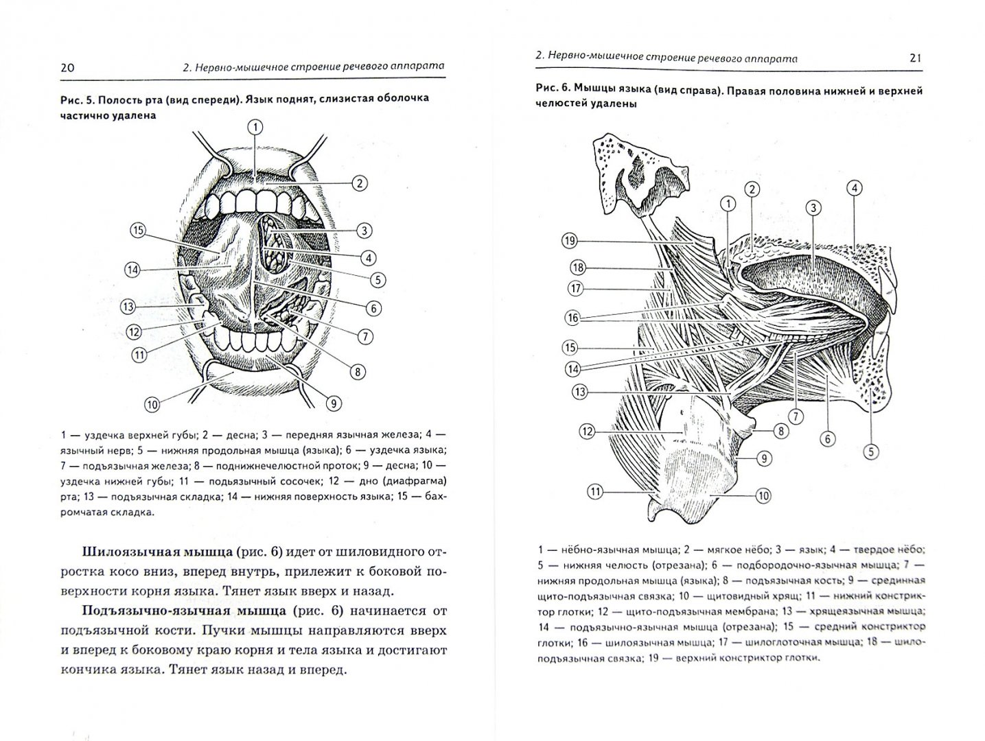 Иллюстрация 1 из 6 для Логопедический массаж при различных речевых нарушениях. Практическое пособие - Инна Карелина | Лабиринт - книги. Источник: Лабиринт