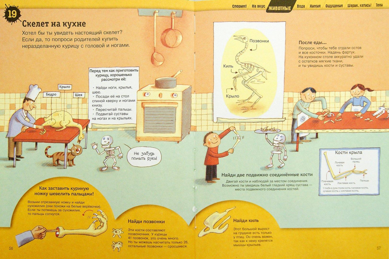 Иллюстрация 1 из 24 для Большая книга простых экспериментов для детей   Лабиринт - книги. Источник: Лабиринт