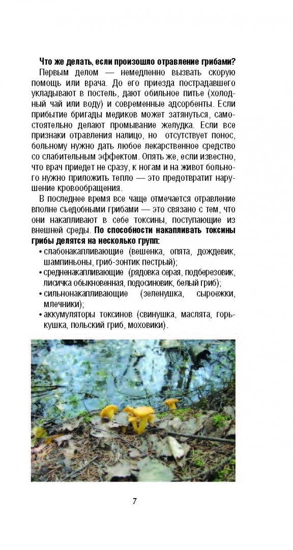 Иллюстрация 4 из 26 для Грибы. Карманный справочник-определитель. Самые распространенные грибы и их двойники - Матанцева, Матанцев | Лабиринт - книги. Источник: Лабиринт