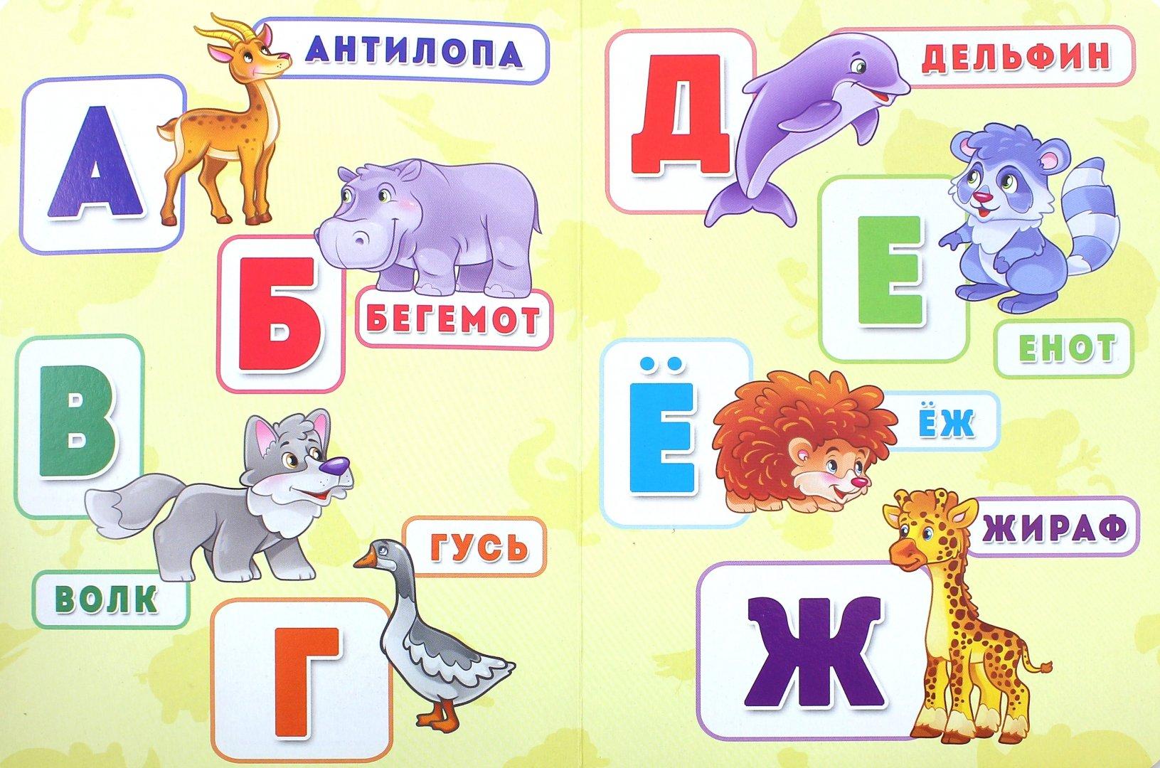 Показать фото всех животных в алфавитном порядке