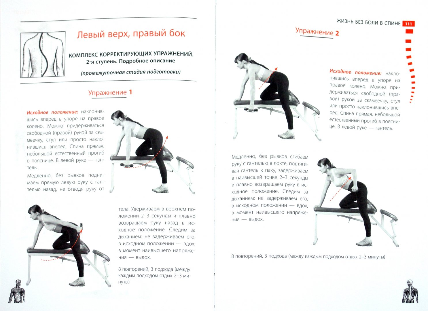Иллюстрация 1 из 13 для Жизнь без боли в спине - Валентин Дикуль | Лабиринт - книги. Источник: Лабиринт