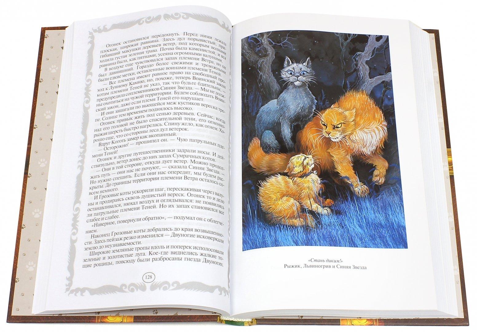 Коты Воители. Лесные Племена. | ВКонтакте | 1080x1552