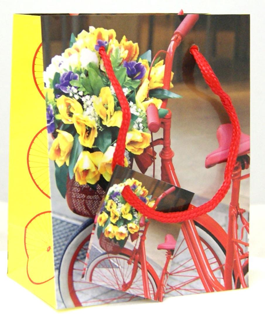 """Иллюстрация 1 из 4 для Пакет бумажный """"Велосипед"""" 11.1*13.7*6.2 см (35923)   Лабиринт - сувениры. Источник: Лабиринт"""