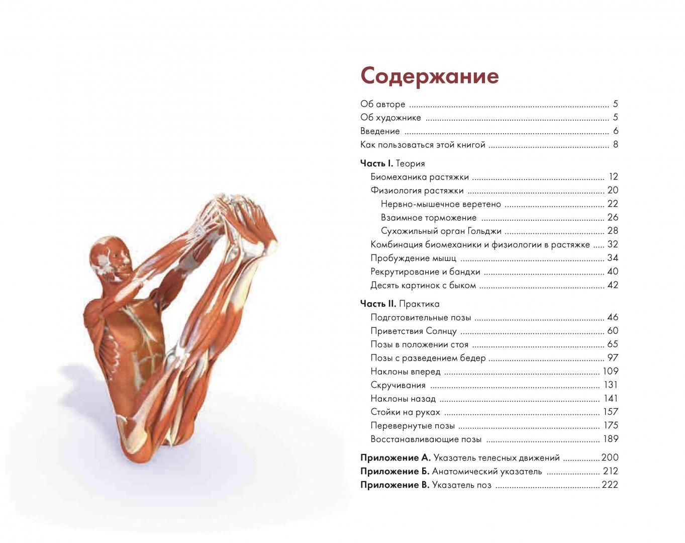 Иллюстрация 1 из 27 для Ключевые позы йоги. Руководство по функциональной анатомии йоги - Рэй Лонг | Лабиринт - книги. Источник: Лабиринт