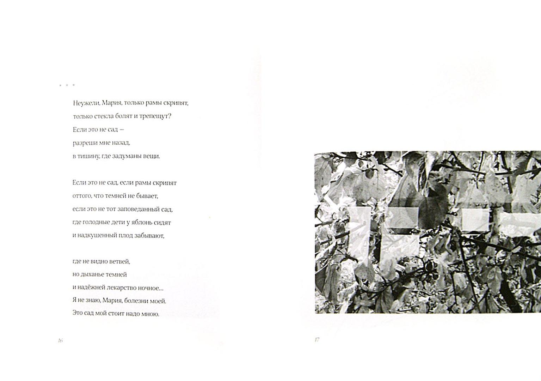 Иллюстрация 1 из 11 для Сад мирозданья - Ольга Седакова | Лабиринт - книги. Источник: Лабиринт