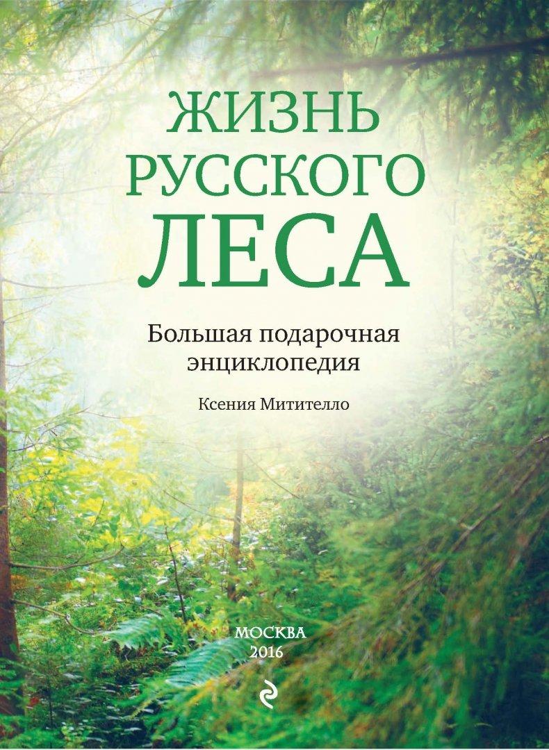 книги про лес картинки порядок доме сложно