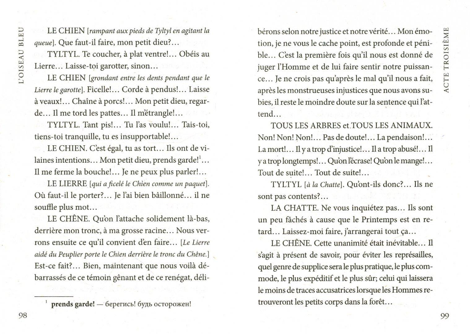 Иллюстрация 1 из 12 для L'Oiseau Bleu - Maurice Maeterlinck   Лабиринт - книги. Источник: Лабиринт