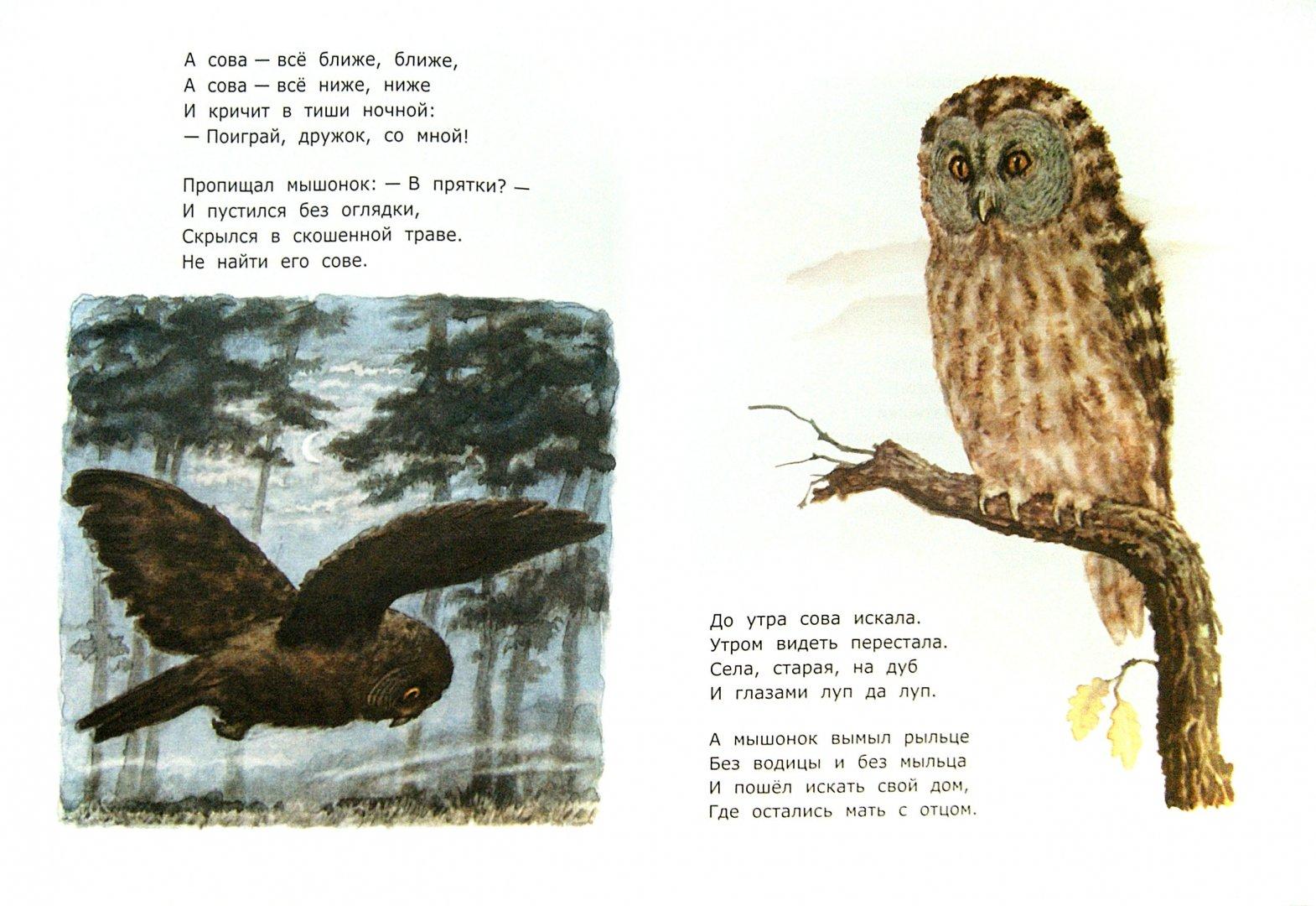 Иллюстрация 1 из 36 для Сказки - Самуил Маршак | Лабиринт - книги. Источник: Лабиринт