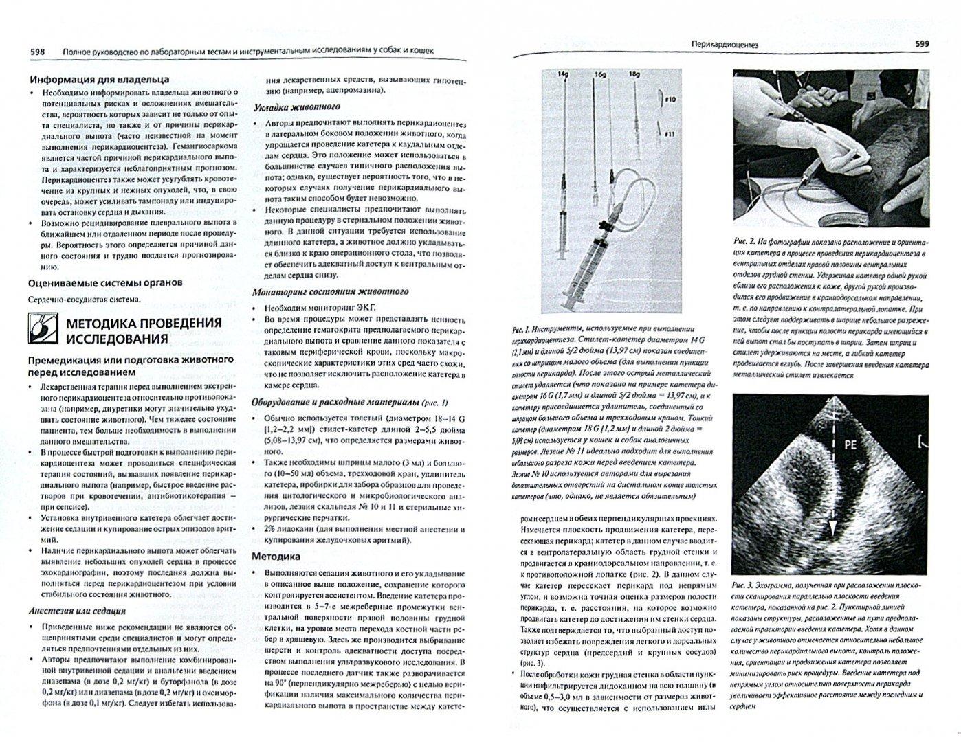 Иллюстрация 1 из 9 для Полное руководство по лабораторным и инструментальным исследованиям у собак и кошек - Ваден, Нолл, Смит-мл, Тиллей | Лабиринт - книги. Источник: Лабиринт