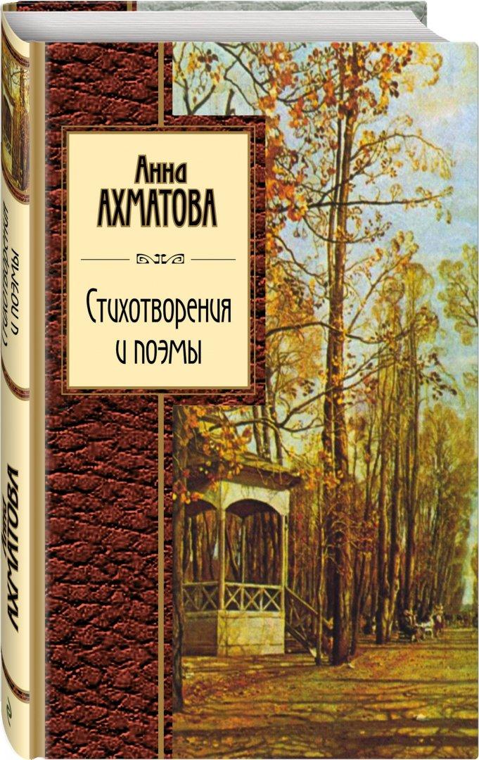 Иллюстрация 1 из 20 для Стихотворения и поэмы - Анна Ахматова   Лабиринт - книги. Источник: Лабиринт