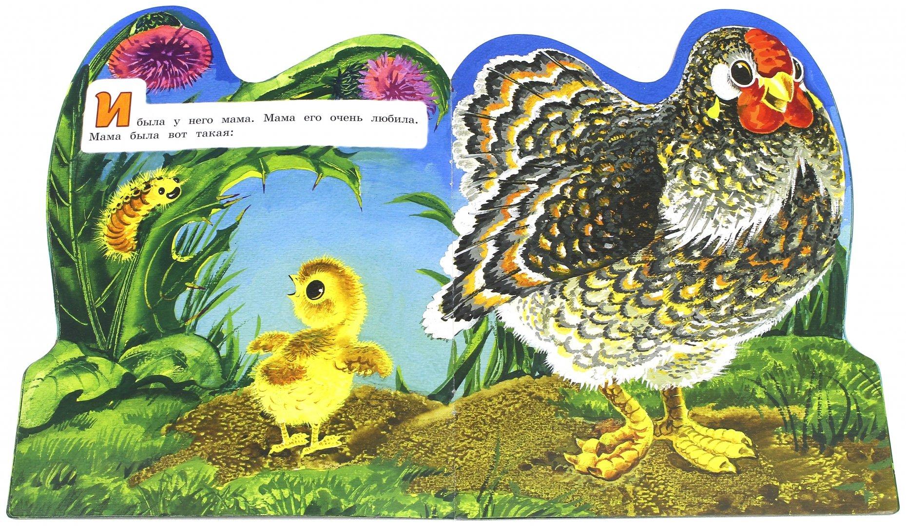 сказки о цыплятах картинки золота