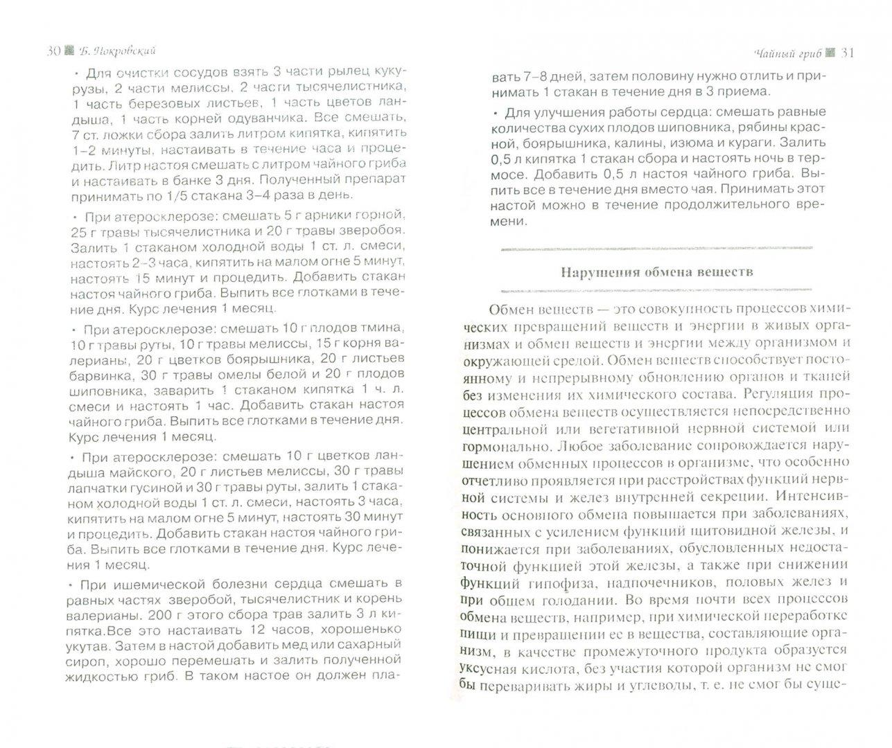 Иллюстрация 1 из 21 для Чайный гриб - Борис Покровский | Лабиринт - книги. Источник: Лабиринт