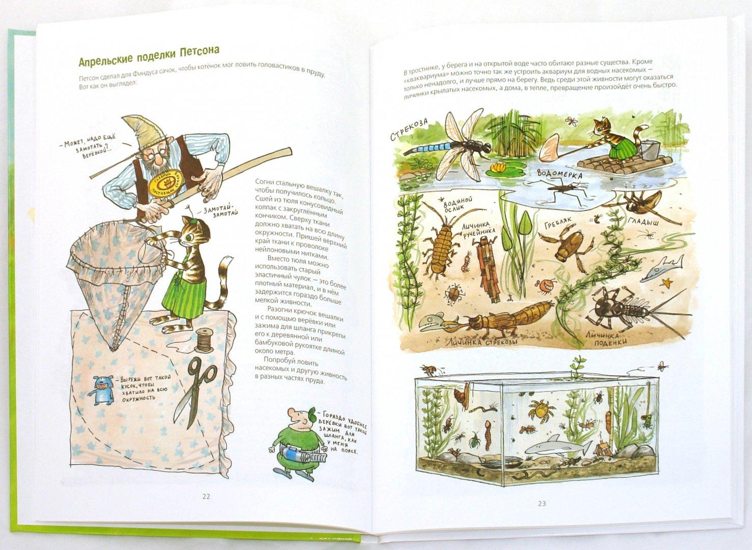 Иллюстрация 1 из 22 для Проделки Финдуса - Нурдквист, Ларсон, Даниельсон | Лабиринт - книги. Источник: Лабиринт