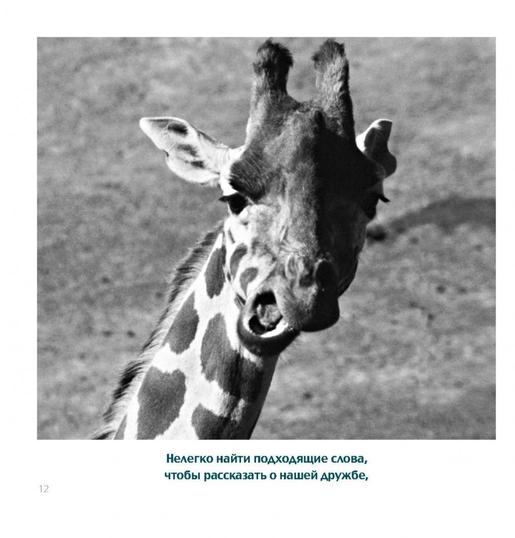 Иллюстрация 5 из 14 для Друзья навеки - Бредли Грив | Лабиринт - книги. Источник: Лабиринт