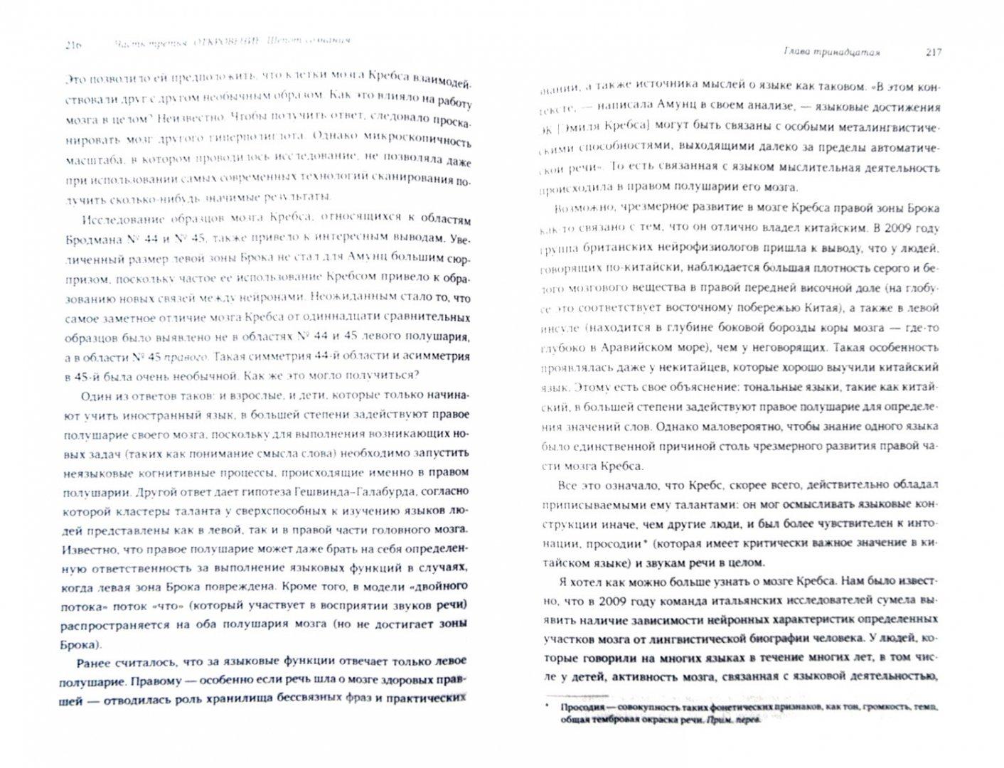 Иллюстрация 1 из 9 для Феномен полиглотов - Майкл Эрард | Лабиринт - книги. Источник: Лабиринт