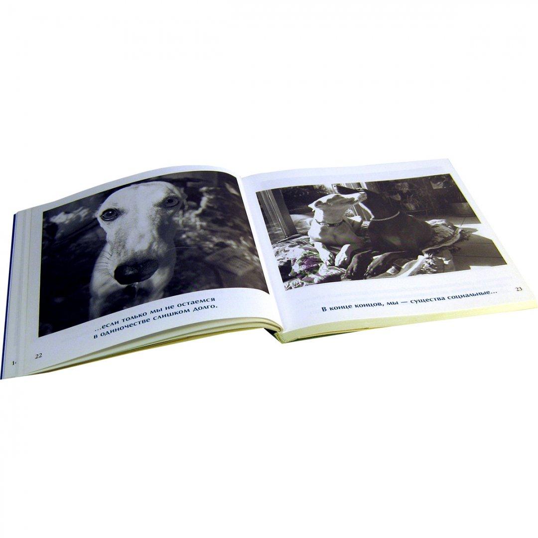 Иллюстрация 10 из 14 для Друзья навеки - Бредли Грив | Лабиринт - книги. Источник: Лабиринт