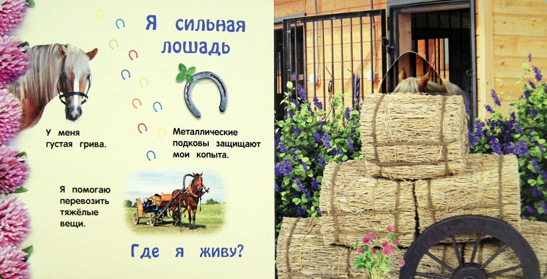 Иллюстрация 1 из 21 для Чей это домик - Анастасия Климко   Лабиринт - книги. Источник: Лабиринт