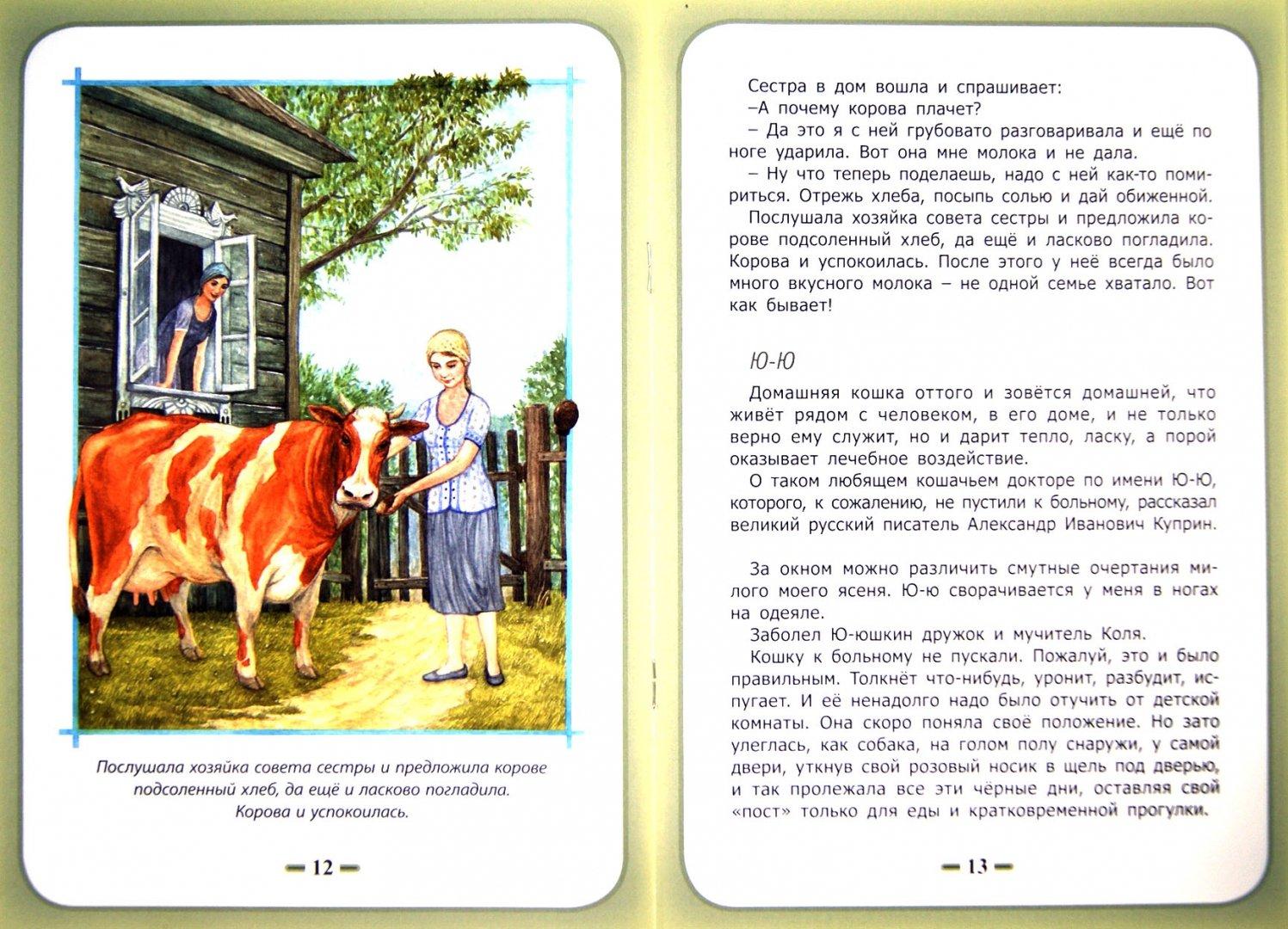 Иллюстрация 1 из 8 для Быть нужным человеку - Белевцева, Жданова | Лабиринт - книги. Источник: Лабиринт