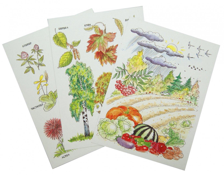 Иллюстрация 1 из 26 для Осень. Беседы с ребенком. Комплект карточек - Вера Шипунова   Лабиринт - книги. Источник: Лабиринт