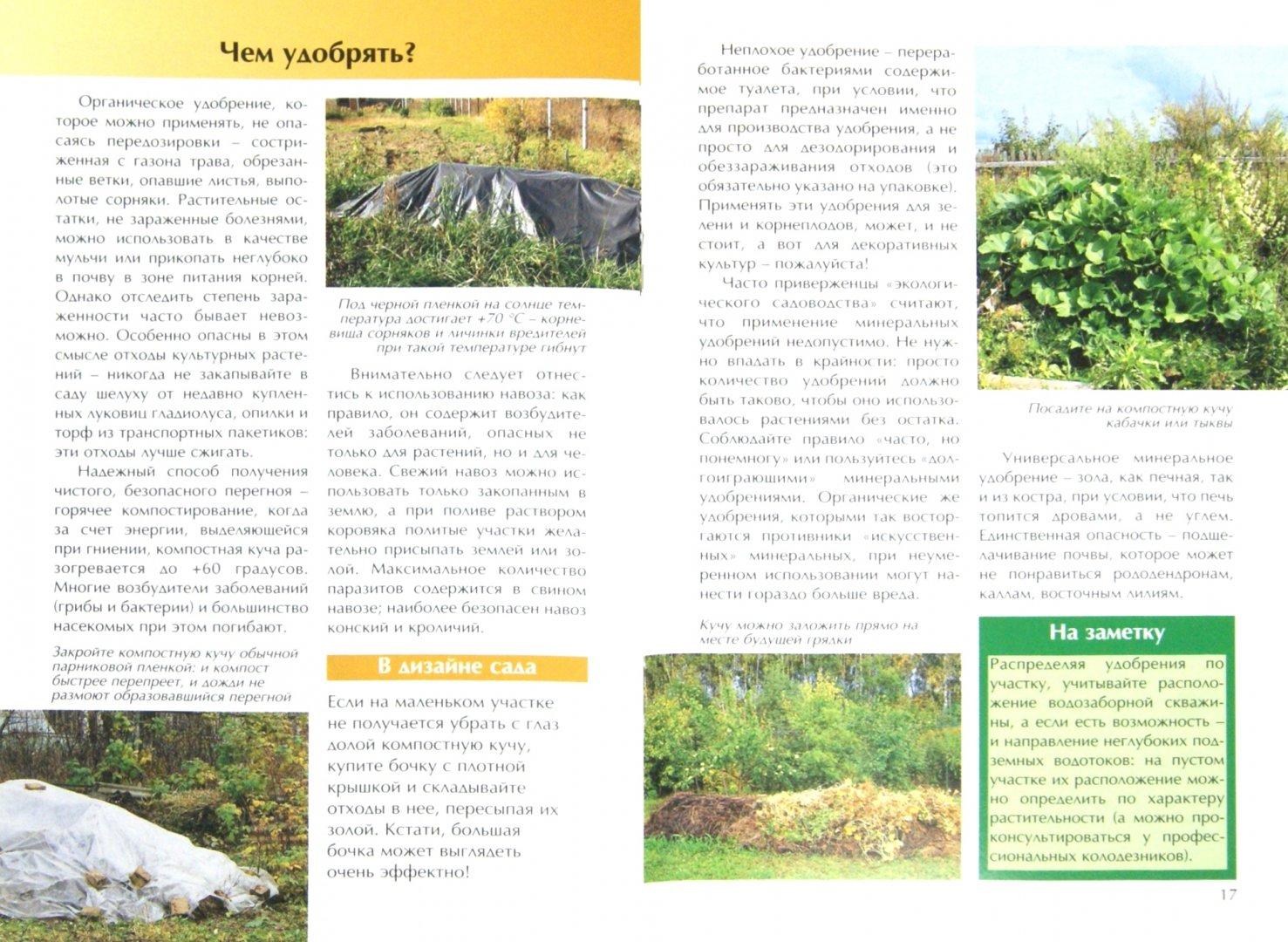 Иллюстрация 1 из 27 для Сад для отдыха и здоровья - Мария Баринова   Лабиринт - книги. Источник: Лабиринт