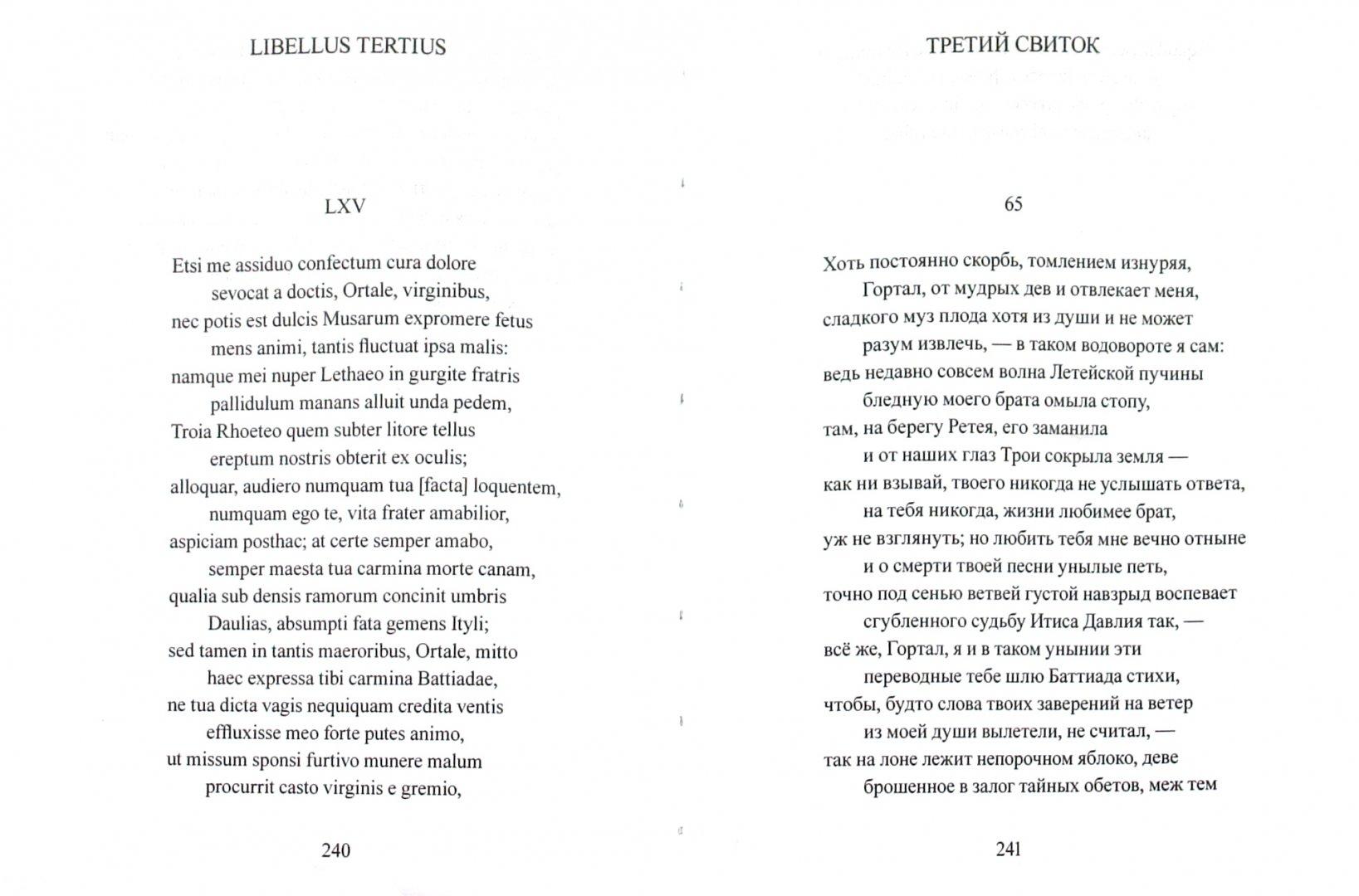 Иллюстрация 1 из 18 для Стихотворения - Гай Катулл | Лабиринт - книги. Источник: Лабиринт