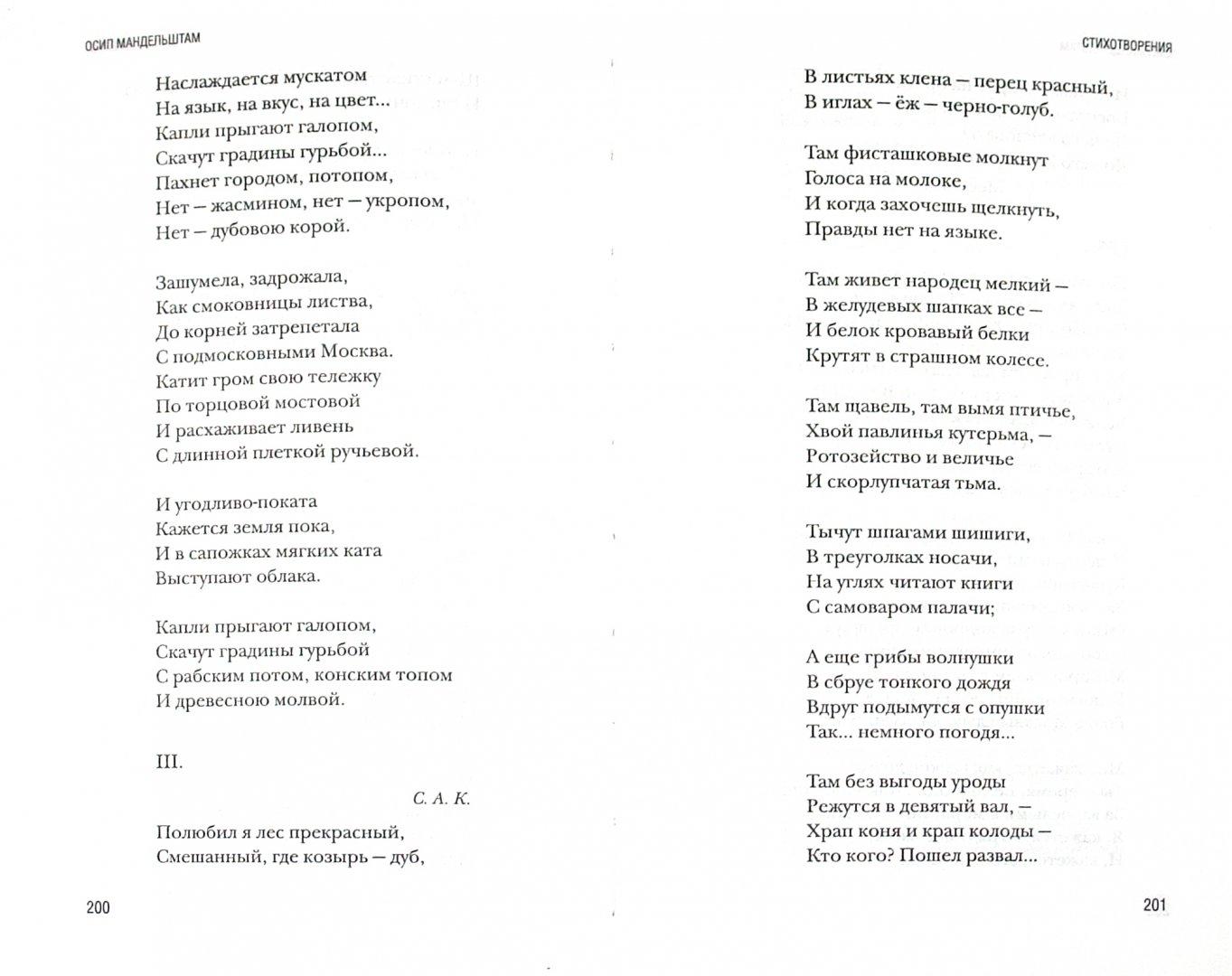 Иллюстрация 1 из 5 для Стихотворения - Осип Мандельштам | Лабиринт - книги. Источник: Лабиринт