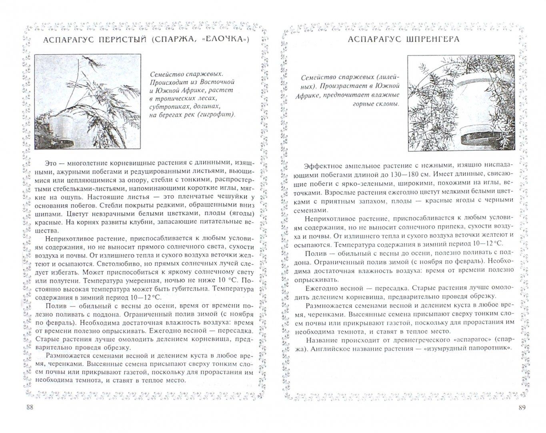 Иллюстрация 1 из 10 для Уроки экологии в начальной школе - Руднянская, Черезова   Лабиринт - книги. Источник: Лабиринт