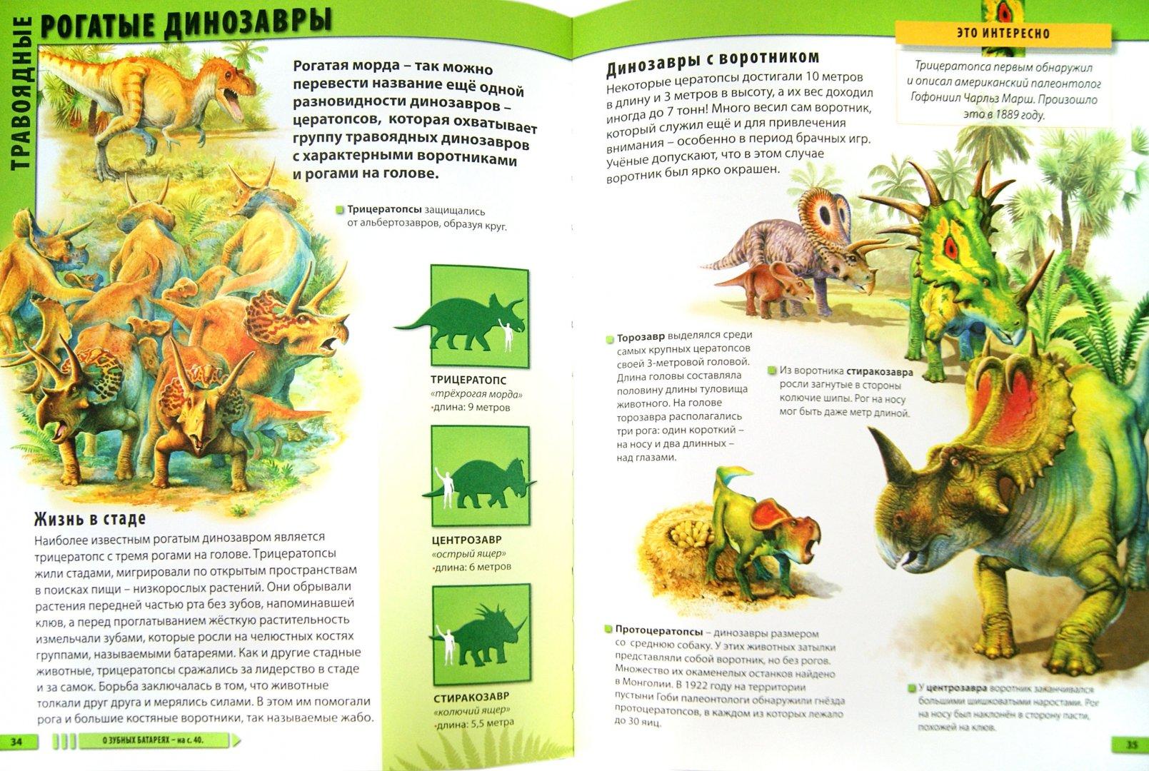 Иллюстрация 1 из 10 для Мир динозавров - Барбара Маевская | Лабиринт - книги. Источник: Лабиринт