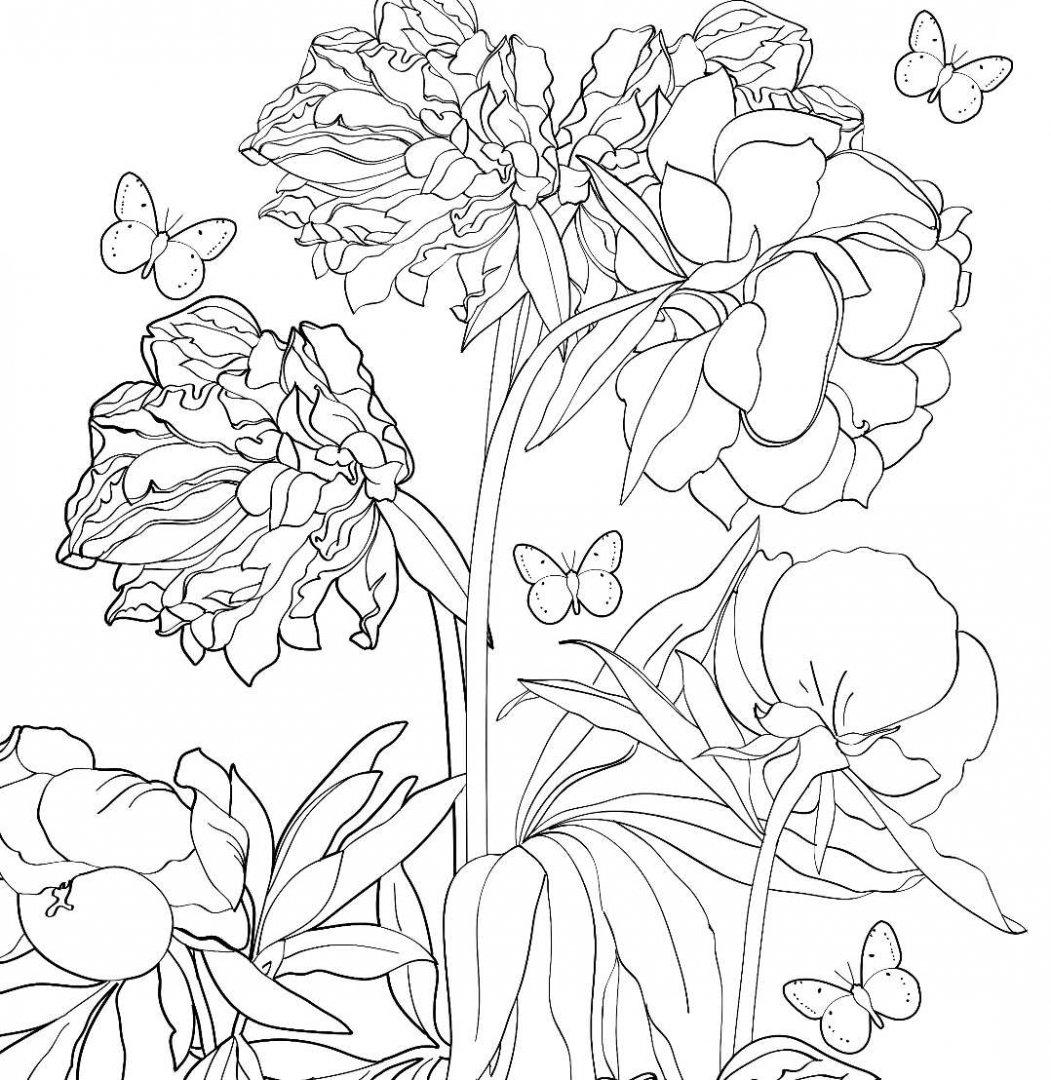 Иллюстрация 10 из 23 для Зачарованный сад. Раскраска ...