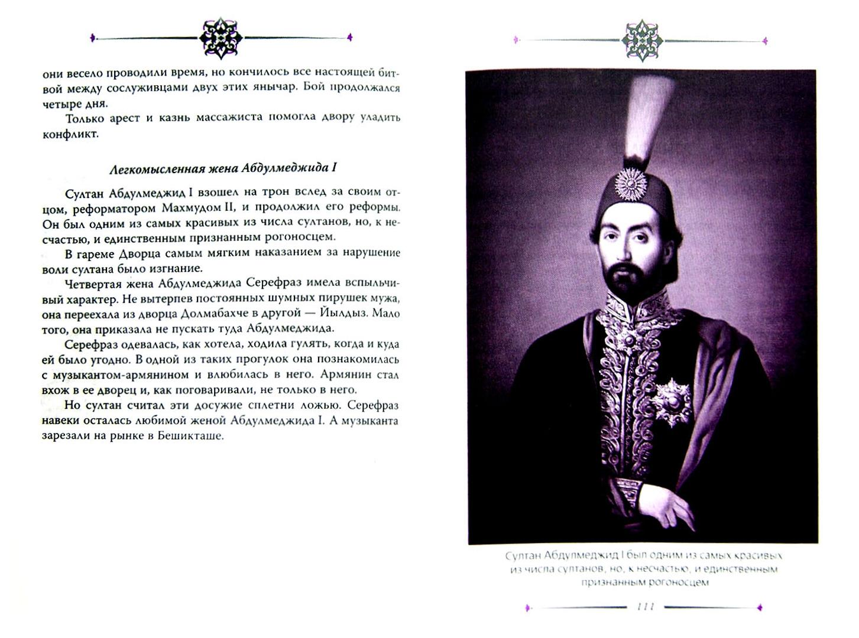 Иллюстрация 1 из 13 для Восточные услады, или Любовные игры султанов - Сема Эрдоган | Лабиринт - книги. Источник: Лабиринт
