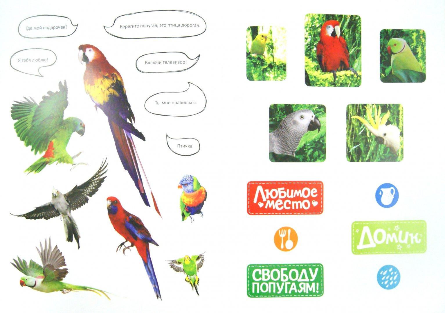Иллюстрация 1 из 25 для Как дружить с попугайчиком | Лабиринт - книги. Источник: Лабиринт