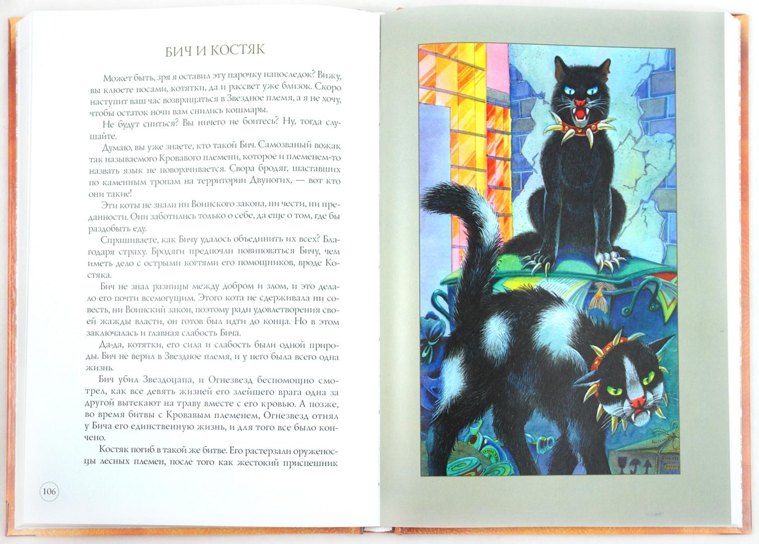 коты воители герои книг с картинками одной открыток