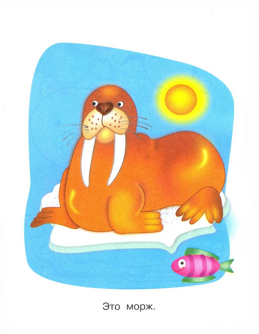 Иллюстрация 1 из 8 для На Северном и Южном полюсах. Пингвиненок   Лабиринт - книги. Источник: Лабиринт