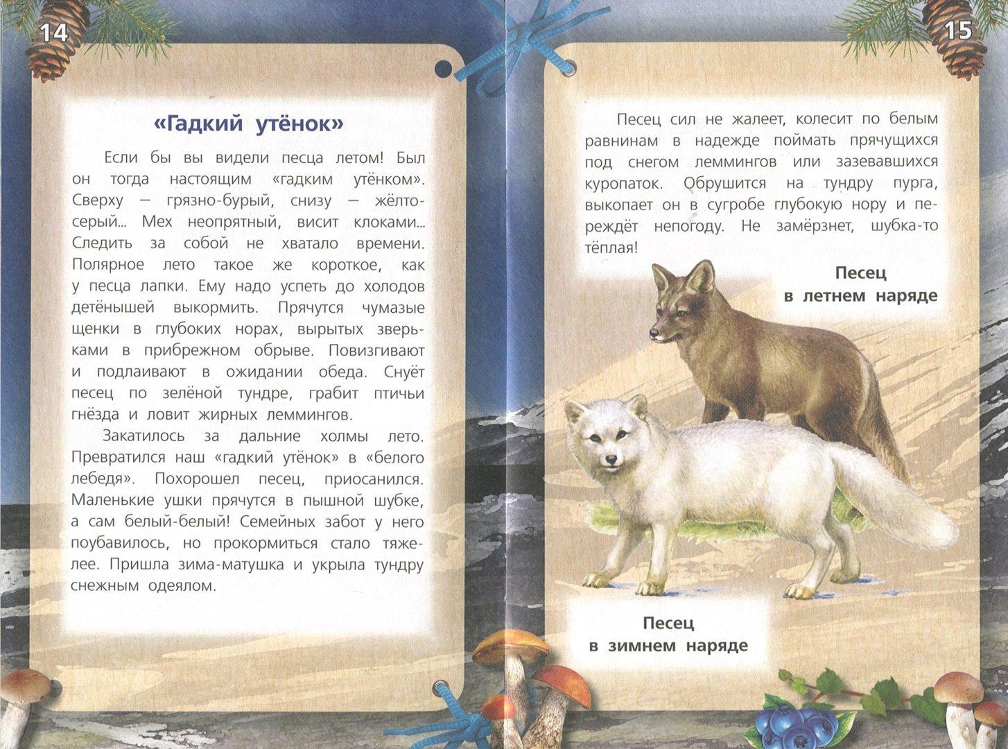 Иллюстрация 1 из 21 для Хищные звери - Александр Тихонов | Лабиринт - книги. Источник: Лабиринт