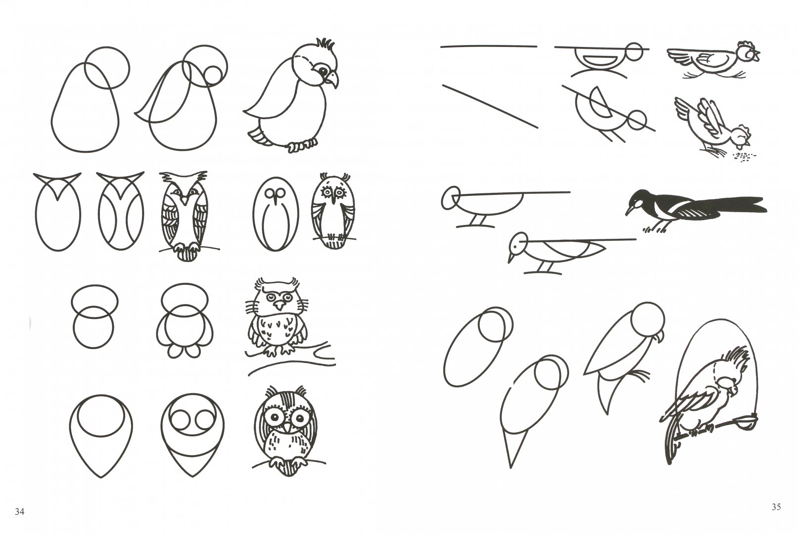 картинки схематических рисунков кругосветки становятся самые