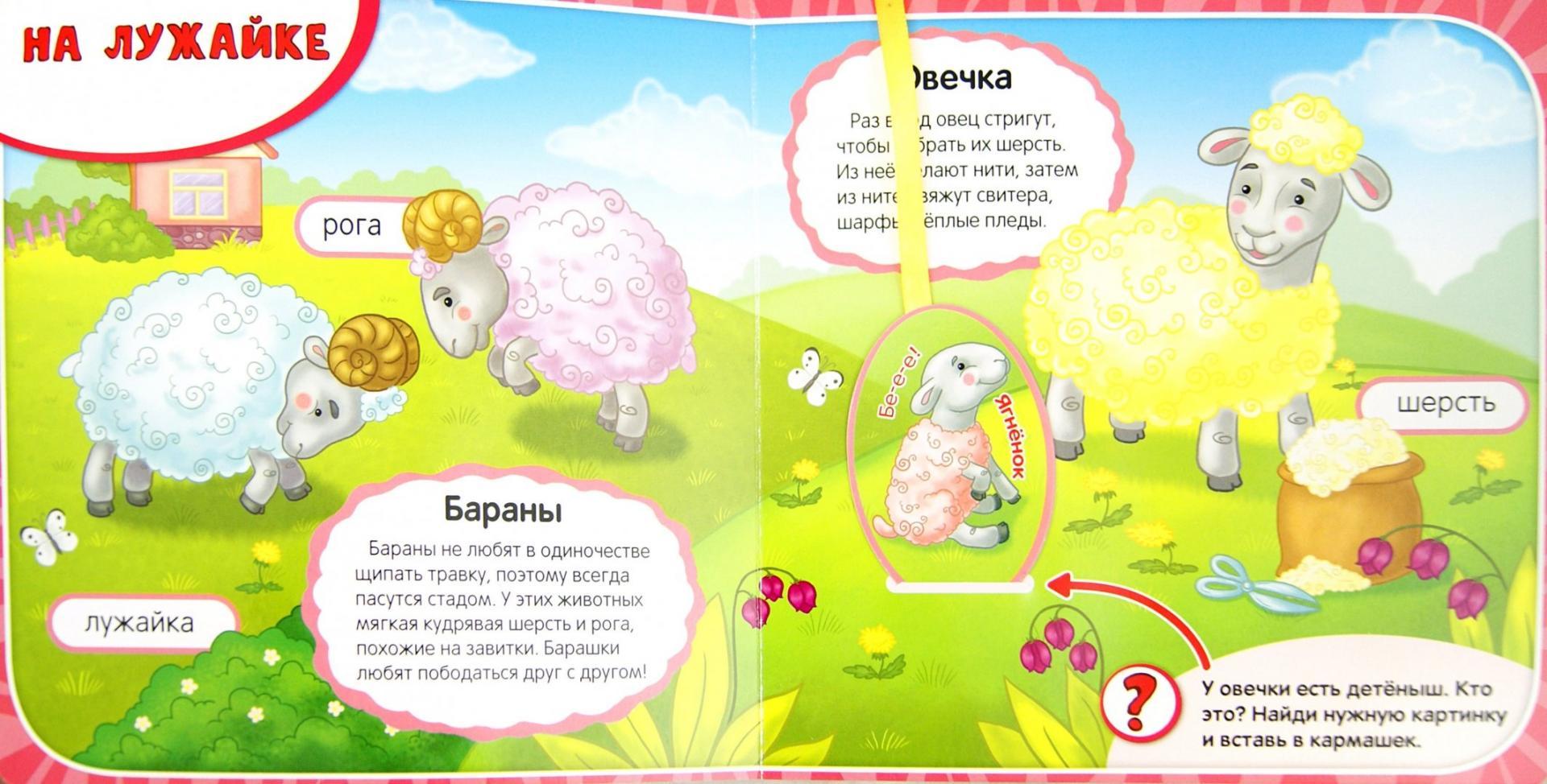 Иллюстрация 1 из 6 для Кто на ферме живет? - Елена Мирная | Лабиринт - книги. Источник: Лабиринт