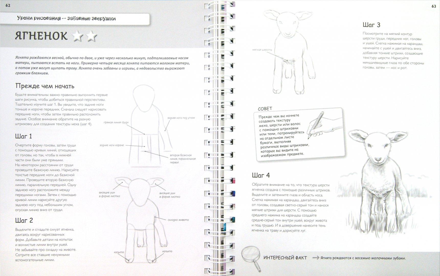 Иллюстрация 1 из 4 для Самые эффективные уроки рисования для тех, кто действительно хочет научиться рисовать - Кэйт Эшфорт   Лабиринт - книги. Источник: Лабиринт