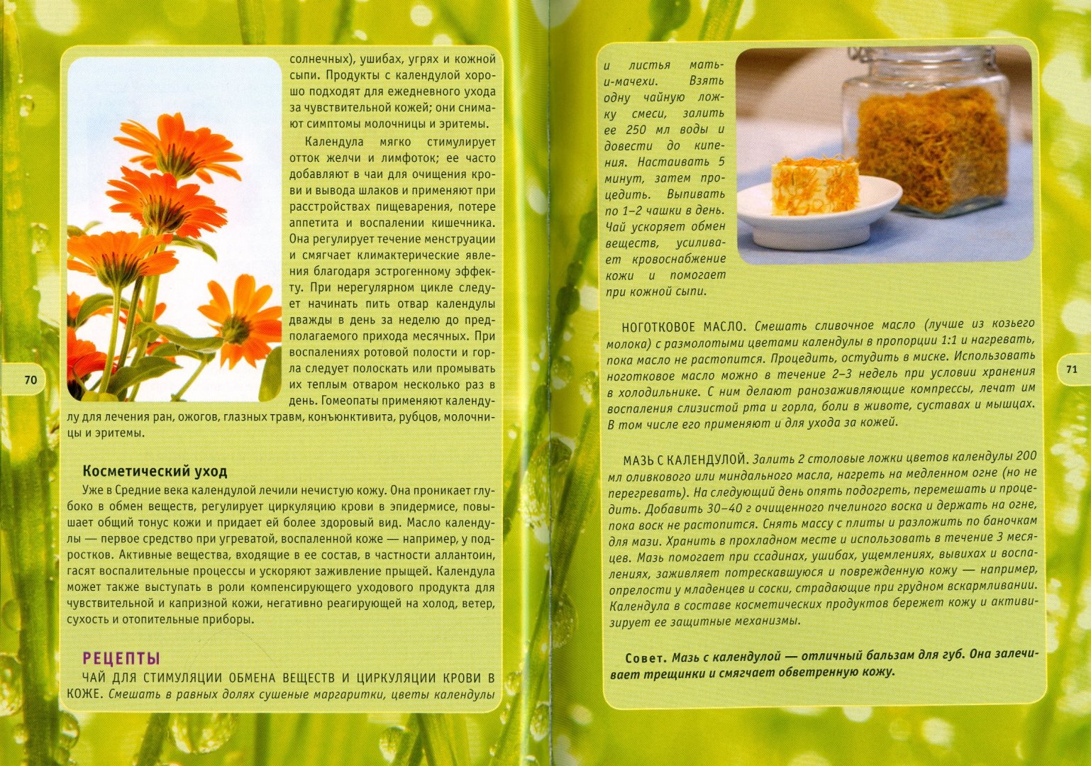 Иллюстрация 1 из 16 для Массаж травяными мешочками - Йохум, Флек | Лабиринт - книги. Источник: Лабиринт
