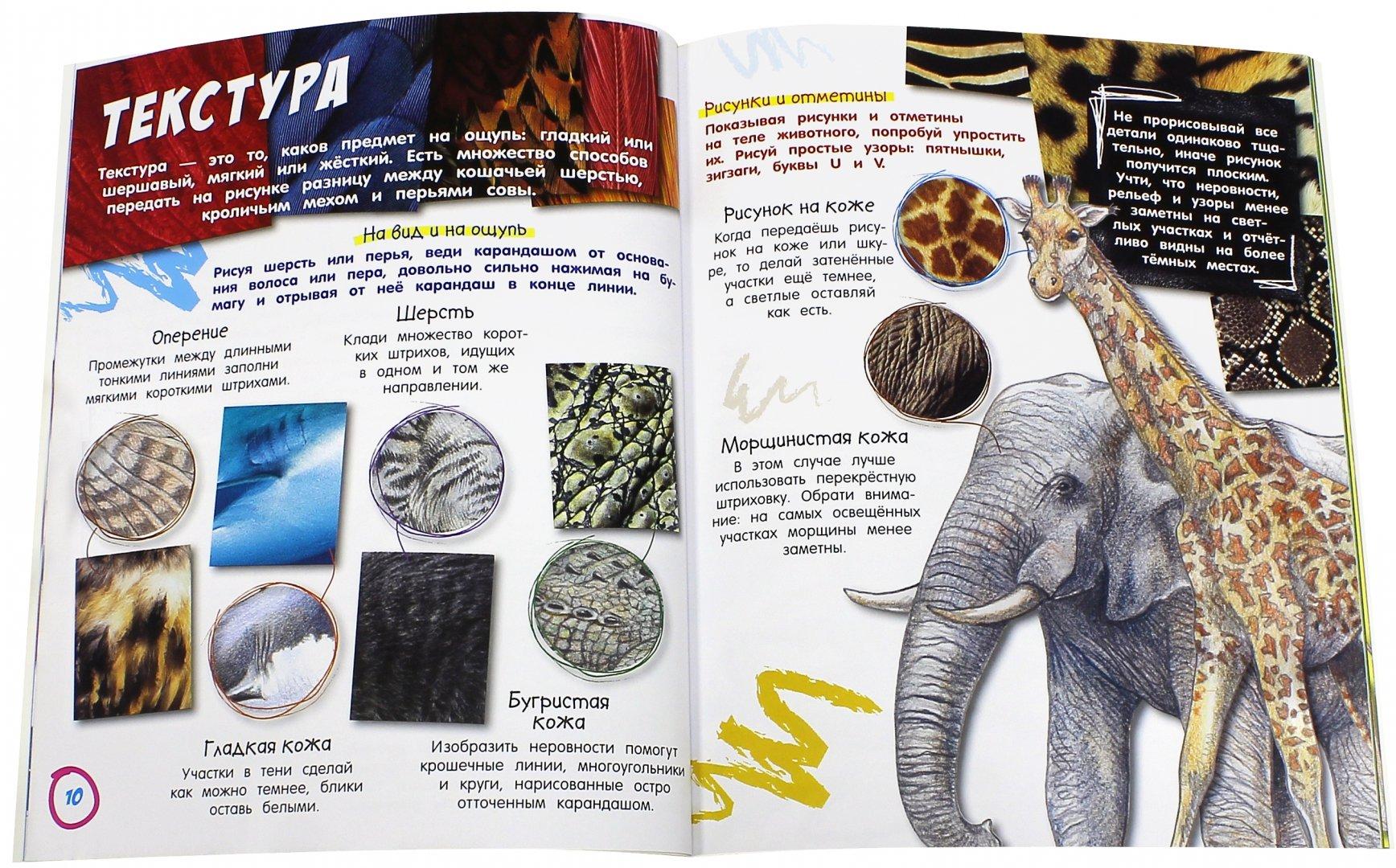 Иллюстрация 1 из 24 для Как нарисовать животных - Сьюзи Ходж   Лабиринт - книги. Источник: Лабиринт