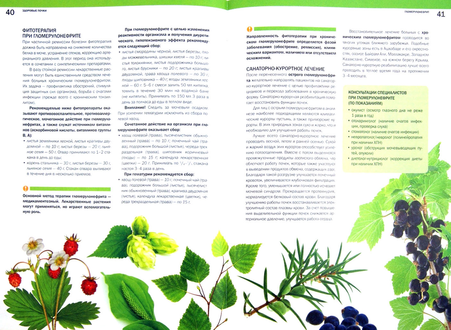Иллюстрация 1 из 11 для Здоровые почки. Мочевыделительная система - Ольга Соловьева | Лабиринт - книги. Источник: Лабиринт