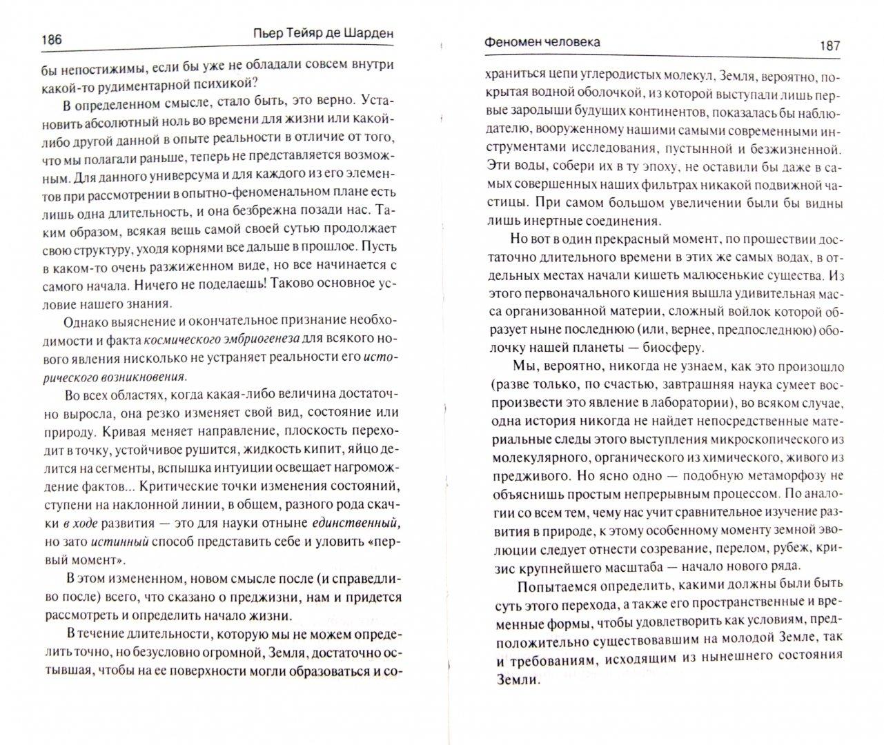 Иллюстрация 1 из 31 для Феномен человека. Божественная среда - Тейяр де Шарден   Лабиринт - книги. Источник: Лабиринт
