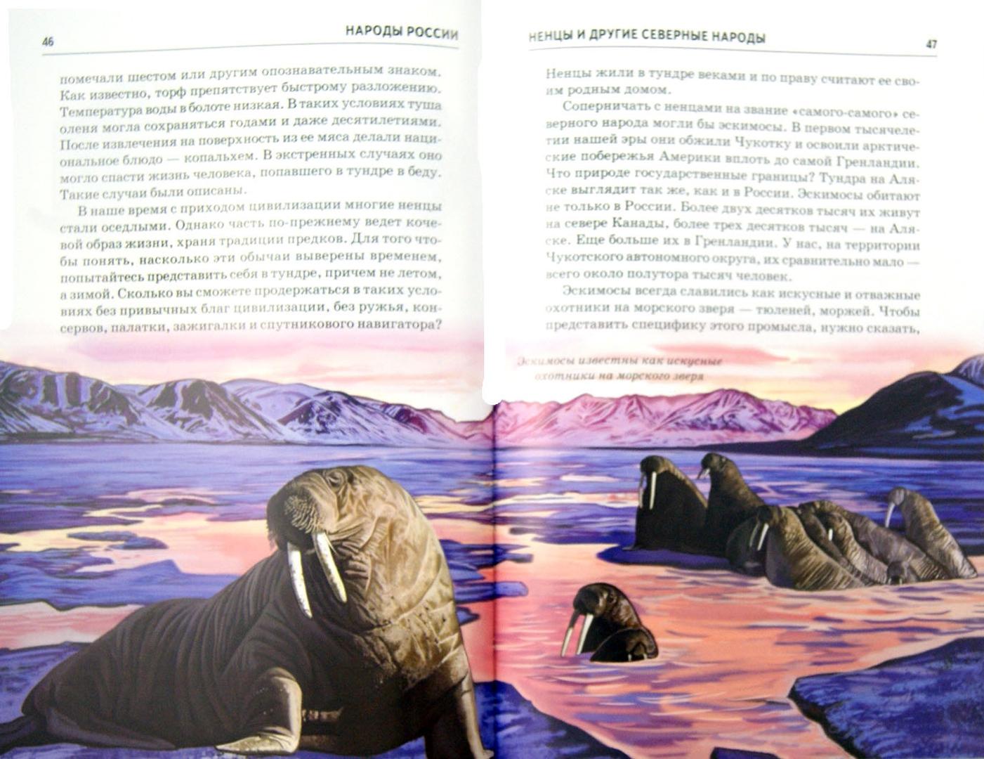 Иллюстрация 1 из 24 для Народы России - Сергей Афонькин | Лабиринт - книги. Источник: Лабиринт