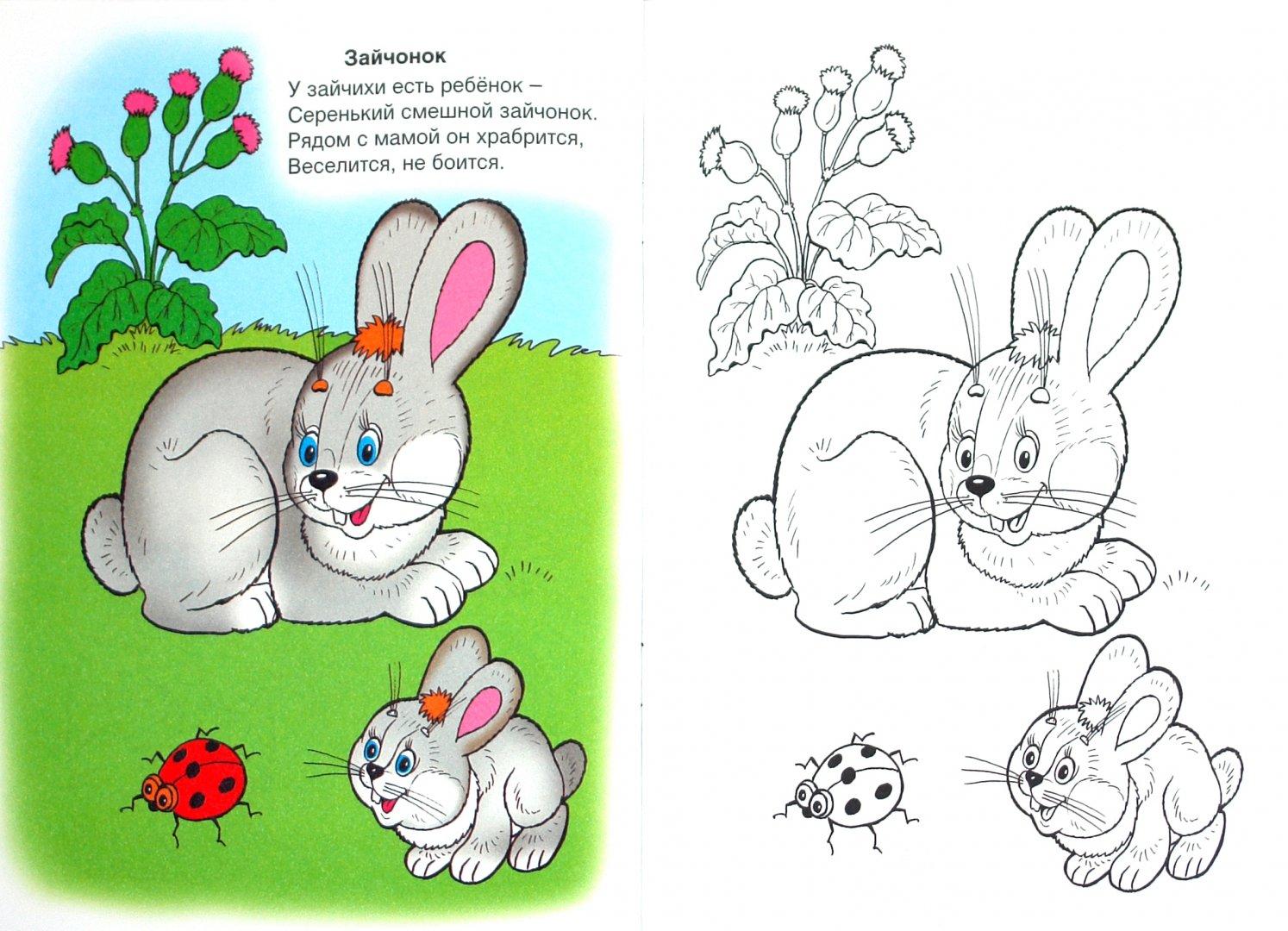 Иллюстрация 1 из 27 для От носика до хвостика - Скребцова, Лопатина   Лабиринт - книги. Источник: Лабиринт