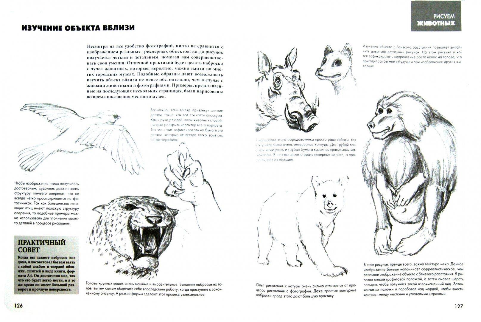 Иллюстрация 1 из 45 для Рисуют все! Полный курс рисования для начинающих - Баррингтон, Грей   Лабиринт - книги. Источник: Лабиринт