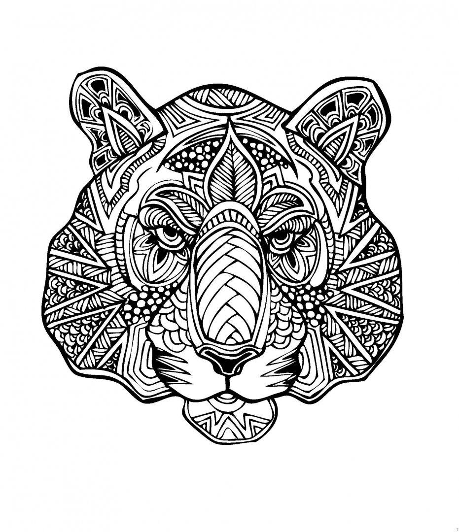 Иллюстрация 4 из 31 для В царстве животных. Мир магических ...