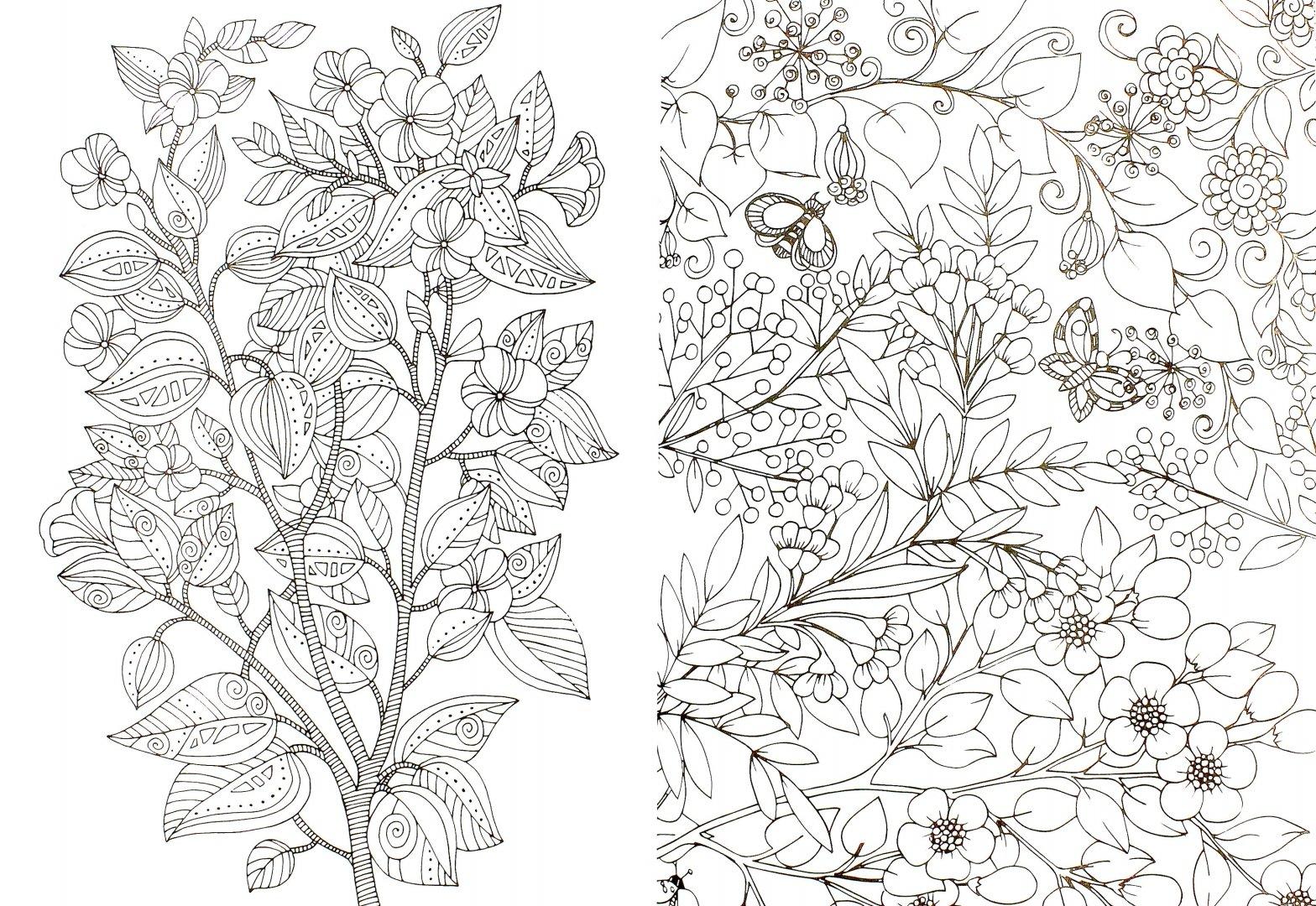 Иллюстрация 1 из 30 для Волшебный сад. Раскраска для ...